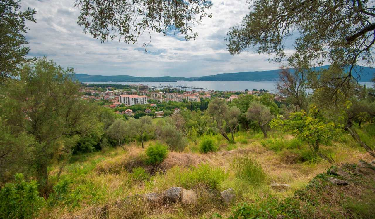 tivat development plot