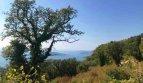 Budva, Kuljace – Development land in remote area for four houses