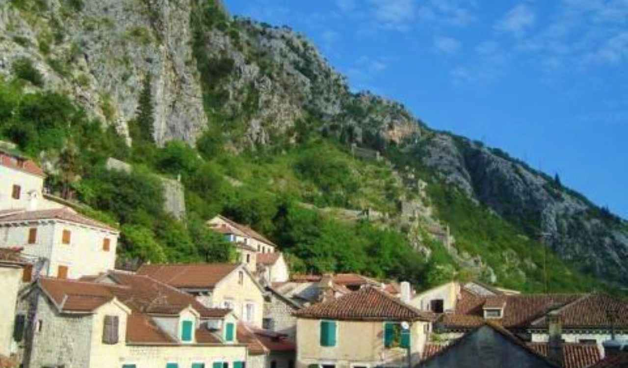 one bedroom apartment prime location kotor