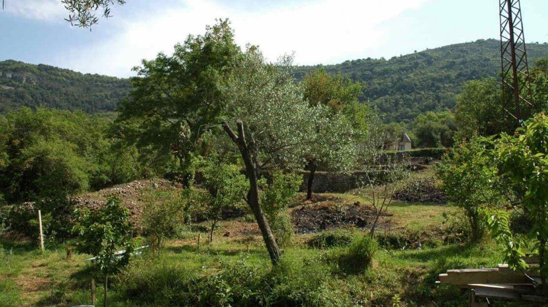 kavac urbanized plot for sale